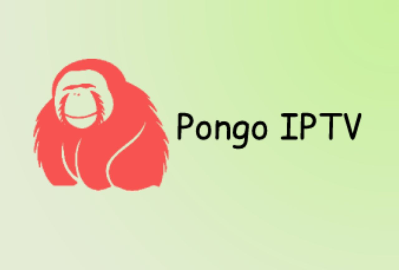 Pongo IPTV - Nordisk IPTV Polar Bear IPTV