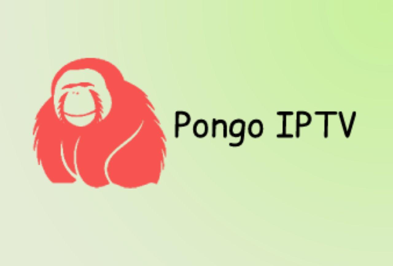 Pongo IPTV - Nordisk IPTV Polar Bear IPTV